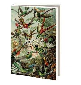 Card Wallet Ernst Haeckel-Teylers Museum