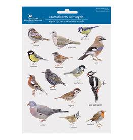 Window stickers garden birds