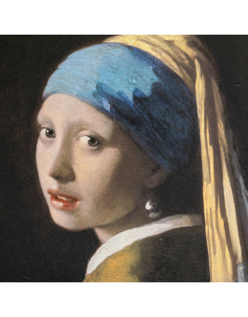 3D Reproduction Vermeer