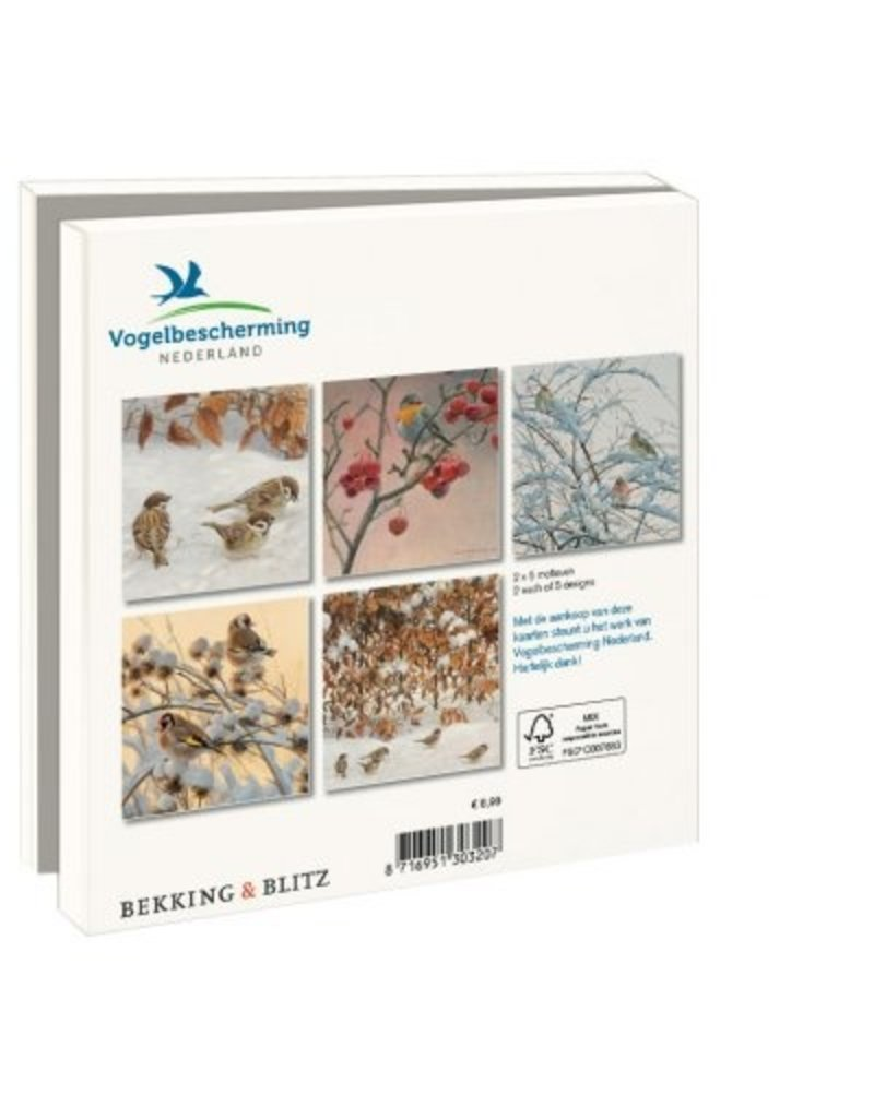 Kaartenmapje Winterbirds, Elwin van der Kolk