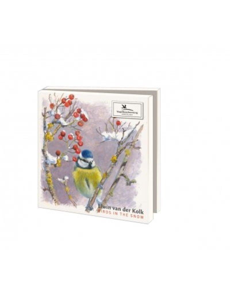 Kaartenmapje Birds in the Snow, Elwin van der Kolk, Vogelbescherming