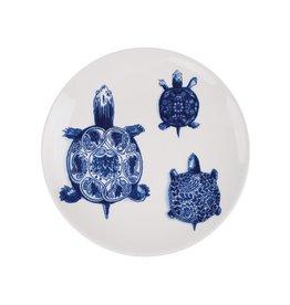 Plate Wunderkammer Turtles