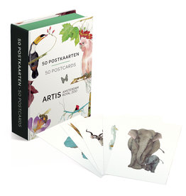 Card Wallet 50 postcards Artis Amsterdam