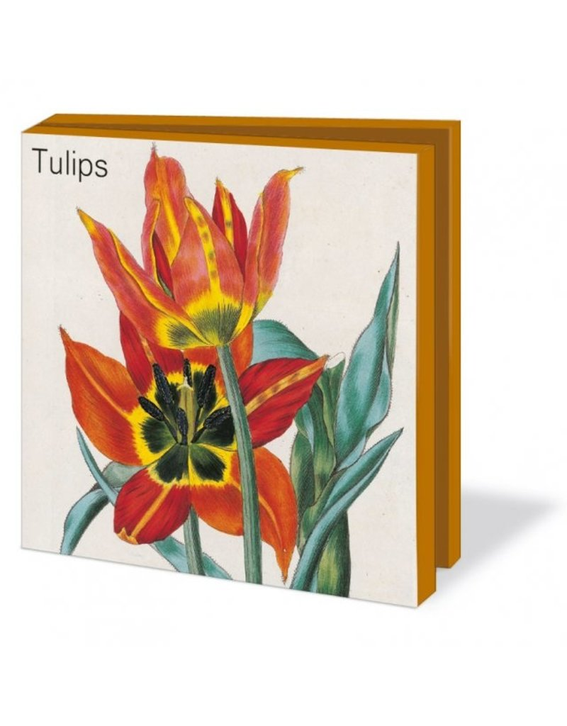 Kaartenmapje Tulips, Museum de Zwarte Tulp