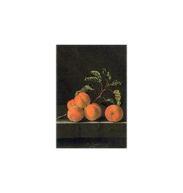 Magnet Apricots Coorte