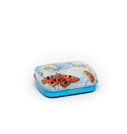 Mintblikje Vlinders