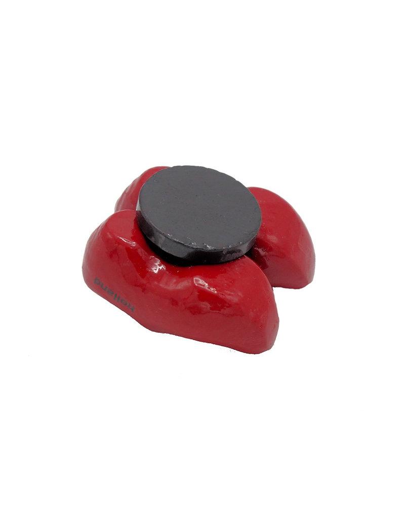 Magneet Nijntje klompjes rood Holland
