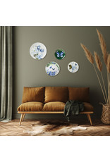 Wall plate dragonfly