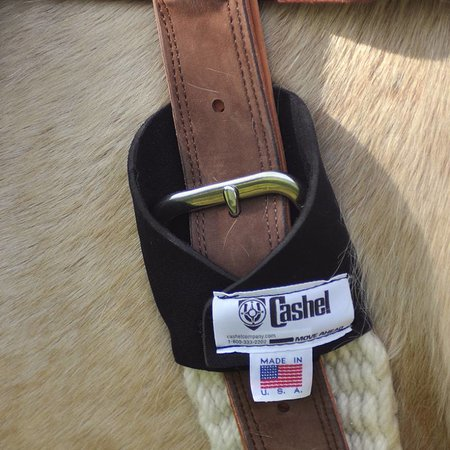 Cashel Ring Master cinch