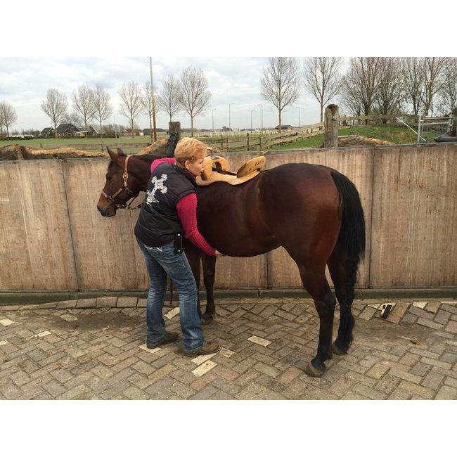 Euro-Horse western riding supplies Sattelpass-Service Deutschland