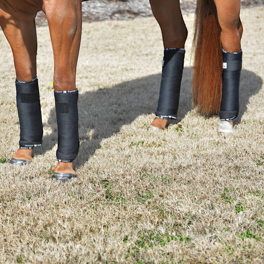 Classic Equine CE Quilted standing wrap, 4 pack