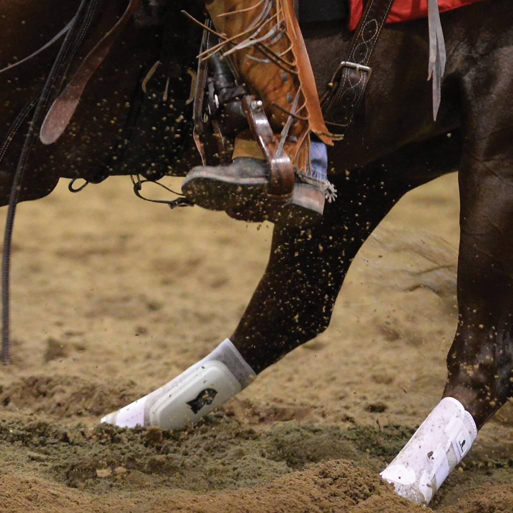 Classic Equine Classic Equine Classic fit boot Hind