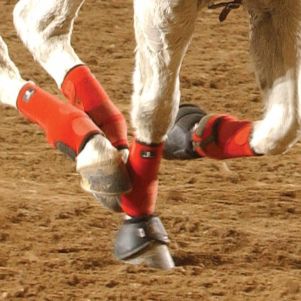Horseboarding met de Legacy peesbeschermers van Classic Equine