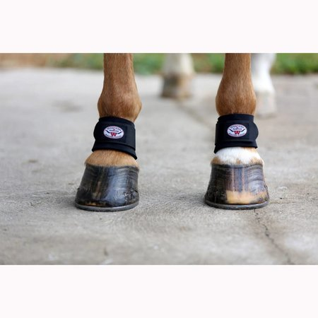Western Rawhide WR Pastern Protection