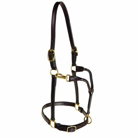 Berlin custom leather Track Leather Halter