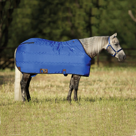 Big D Kodiak Stable blanket