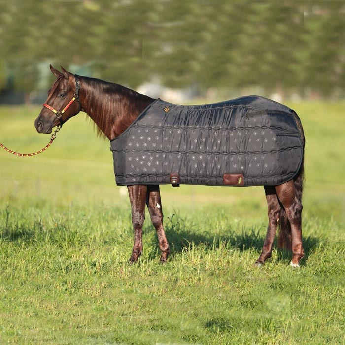 Big D Show Coat Blanket Liner