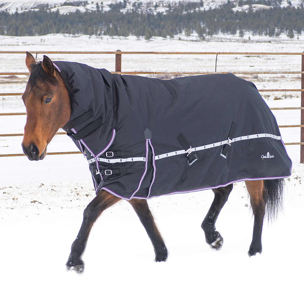 Classic Equine 10K Cross Trainer Blanket