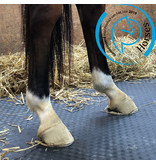 Mayo MAYO Matelas pour chevaux 1.83x1.20m