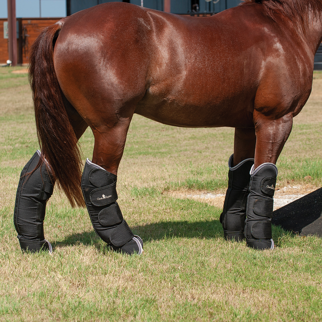 Classic Equine Shipping Boots
