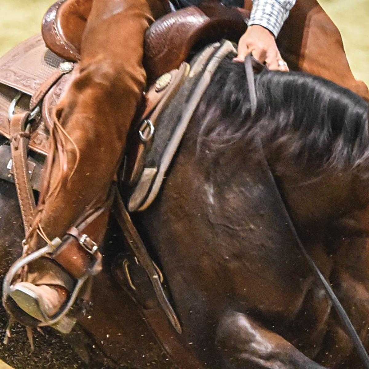 Classic Equine ESP Felt Top
