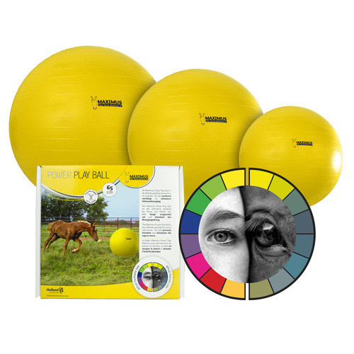 Holland Animal Care Power Play Ball Maximus