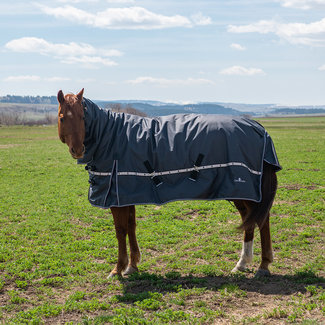 Classic Equine 5K Cross Trainer Hooded  Blanket