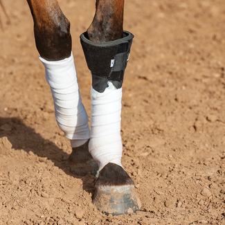 Classic Equine Knee Boot 2