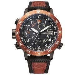 Citizen BN4049-11E Promaster Altichron horloge