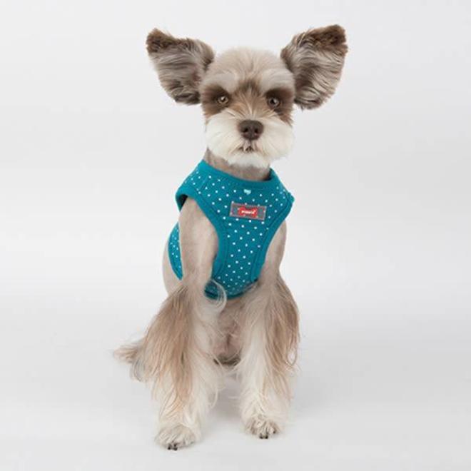 Dotty Harnais Puppia B Summer Bleu JlcKu3TF1