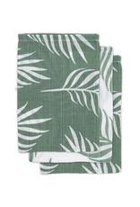 Jollein Gant de toilette hydrophile Nature vert cendre (paquet de 3)