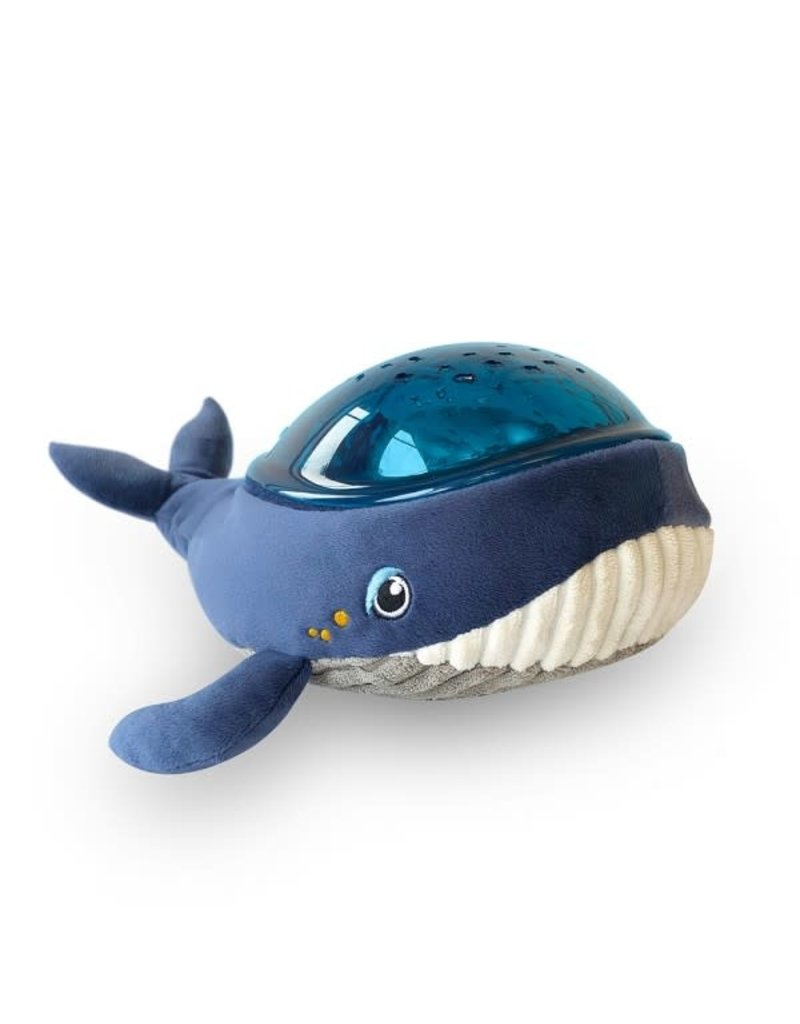Pabobo Aqua Dream - Whale