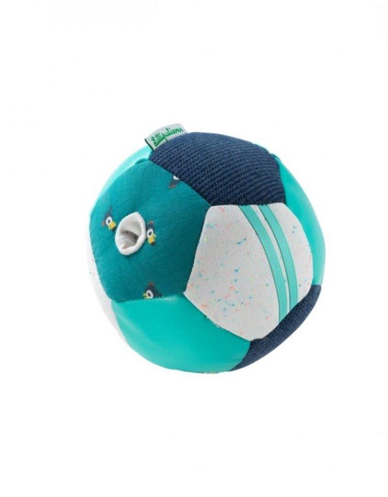 Lilliputiens Activiteitenbal - Pablo