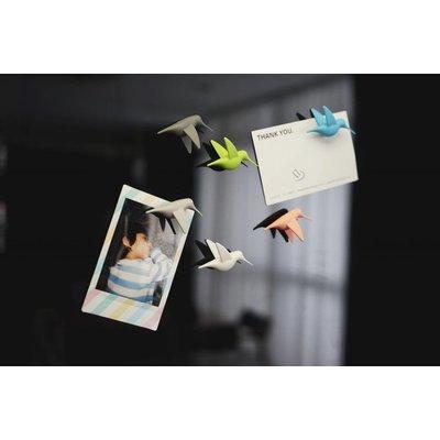 Kolibri Magneetjes Pastel