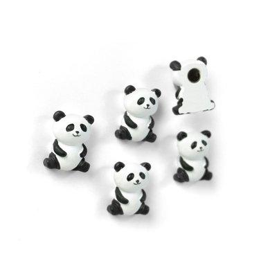 Panda Magneetjes 5 stuks