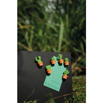 Qualy Magneetjes Cactus 6 stuks