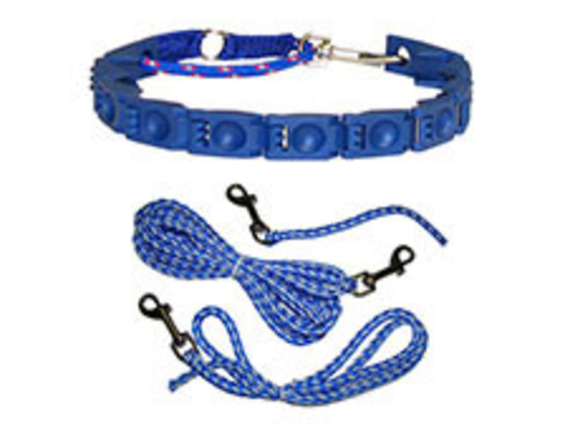 "Hondenhalsband ""Perfect Dog"" Complete Set"