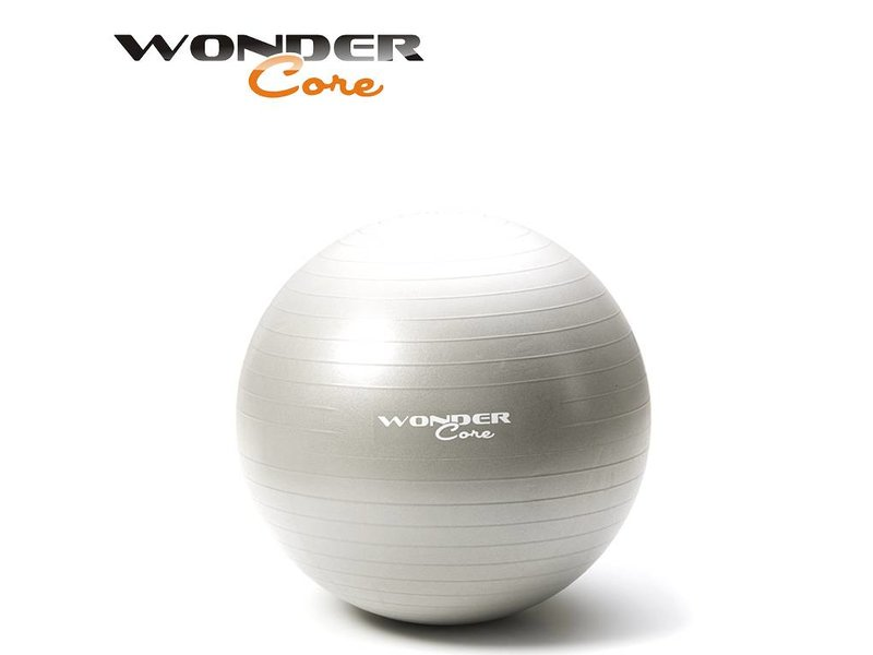 Wonder Core Anti-Burst Gym Ball - 65 cm - Gray