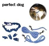 """Hondenhalsband """"Perfect Dog"""""""