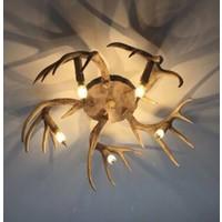 Plafondlamp vijf gewei
