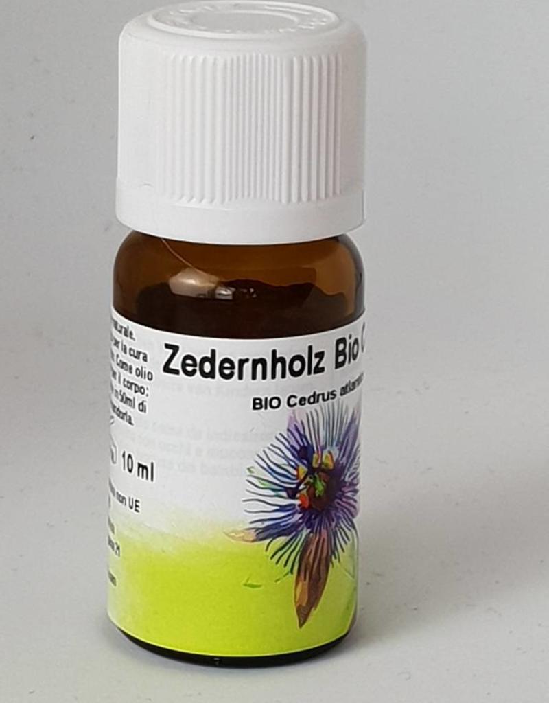 Bio Zedernholz - Cedrus atlantica