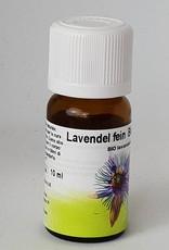 Bio Lavendel fein - Lavandula angustifolia