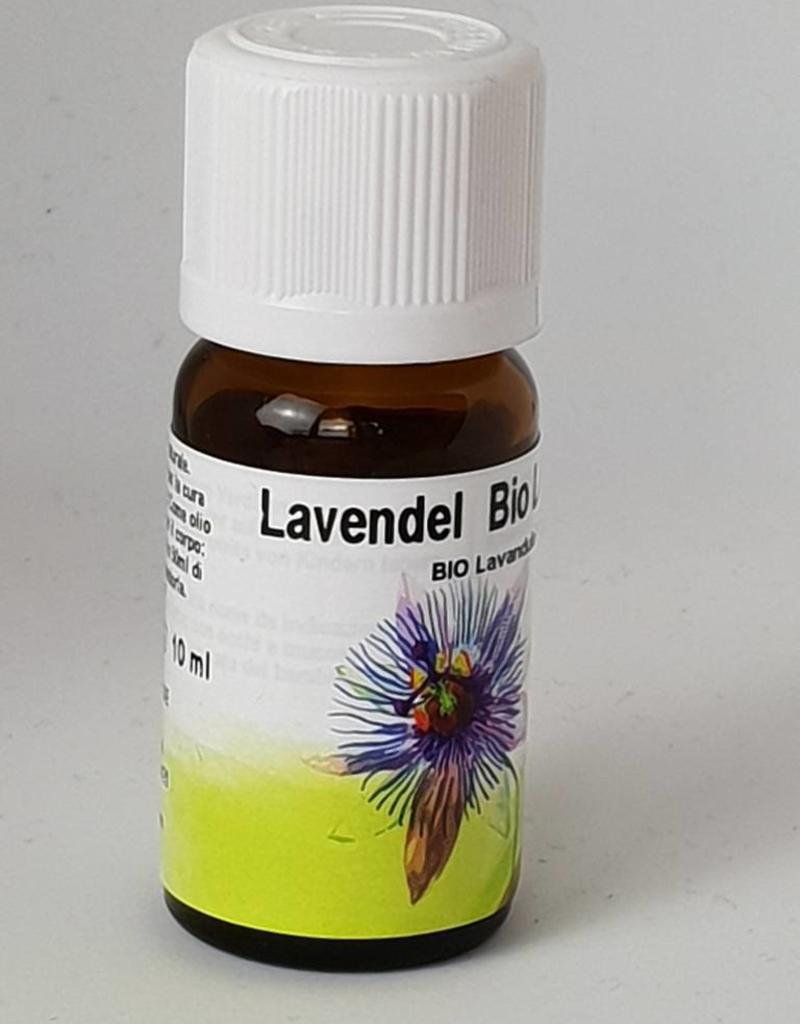 Bio Lavendel Lavandula hybrida