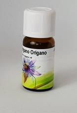Bio Origano - Origanum vulgare