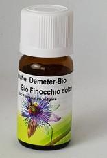 Bio Fenchel - Foeniculum vulgare