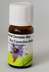 Bio Finocchio - Foeniculum vulgare