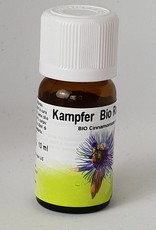 Bio Kampfer - Cinnamomum camphora