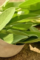 Salvia officinalis Demeter Bio