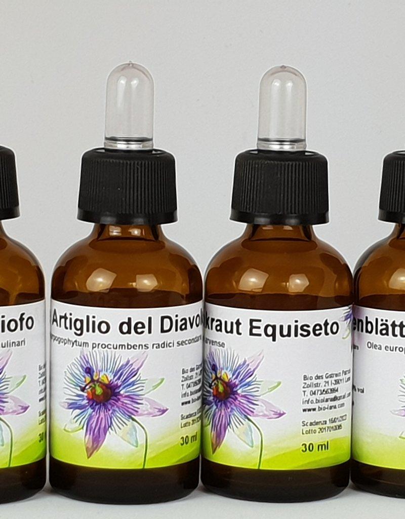 bio Angebot: Geosan Silberbettlaken mit Geosan Mineral Kräuter Extraktkissen + Extrakte Set klein