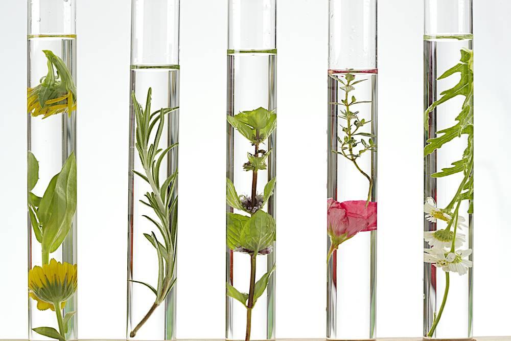 Ingrediënten in cosmetica met uitleg (INCI's)
